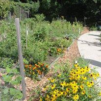 comm garden 2